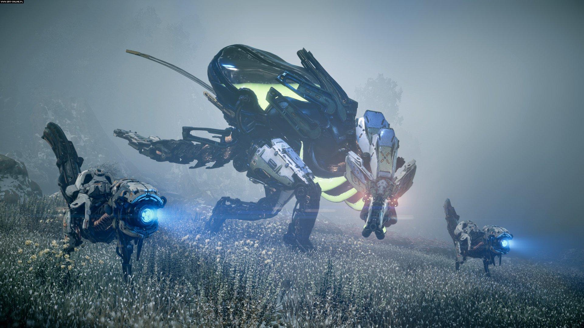 Horizon Zero Dawn PS4 Games Image 5/54, Guerrilla Games, Sony Interactive Entertainment