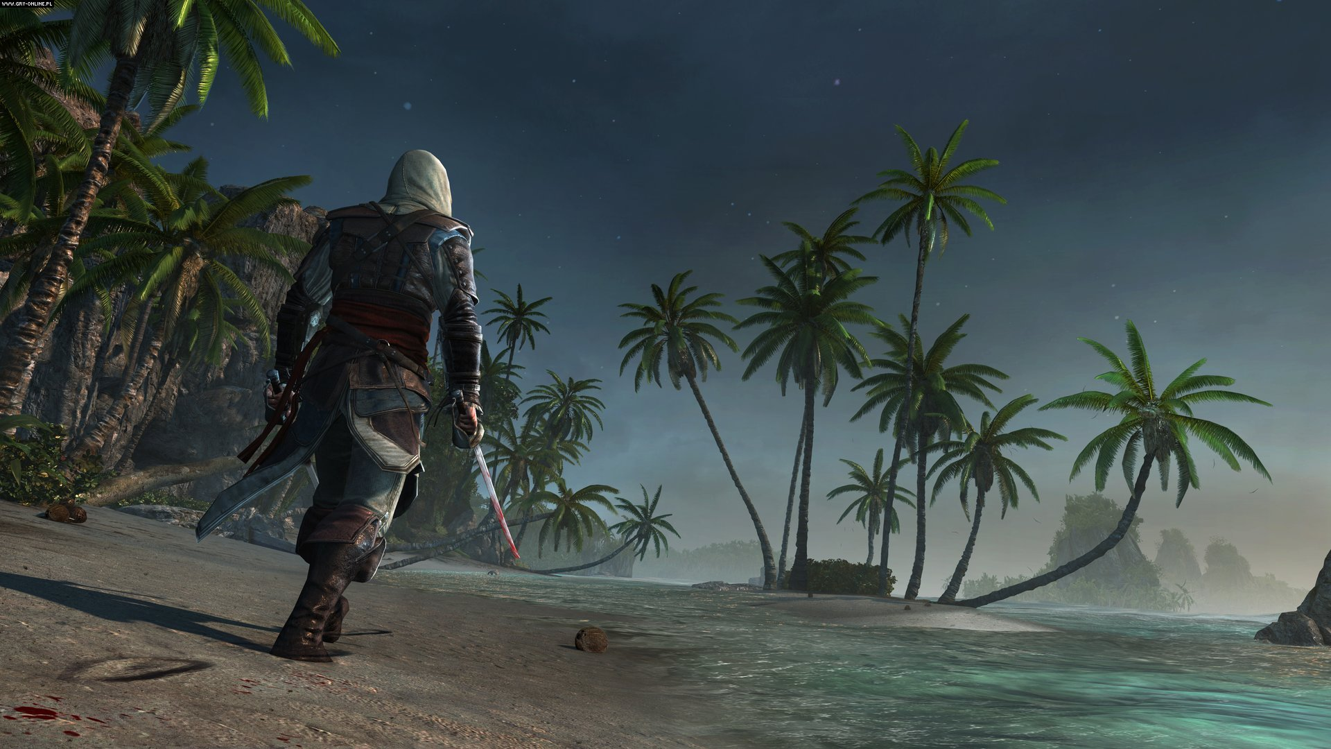Assassin's Creed IV: Black Flag PC, PS4, XONE Gry Screen 37/107, Ubisoft