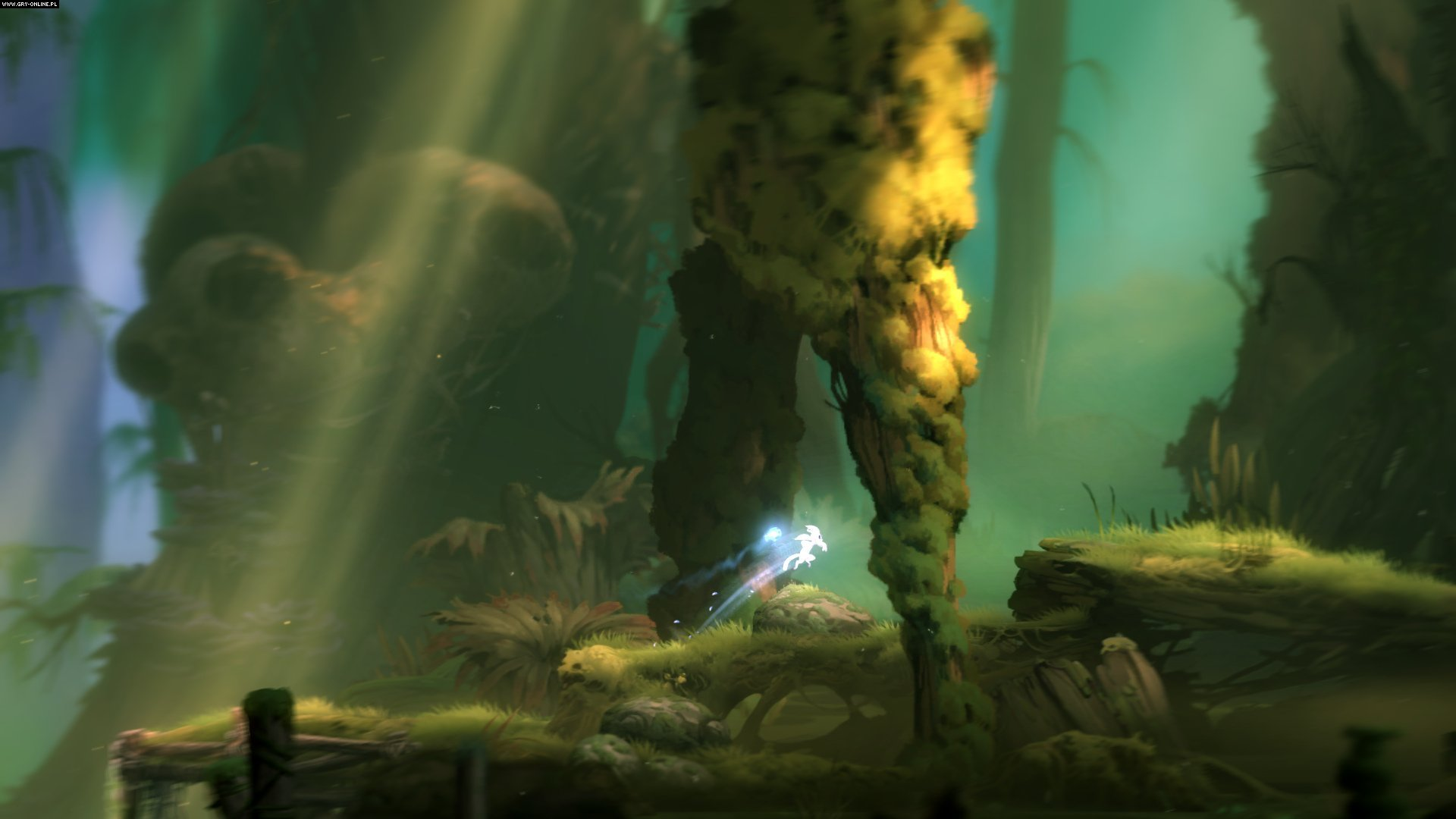 Ori and the Blind Forest PC, XONE Games Image 4/28, Moon Studios, Xbox Game Studios / Microsoft Studios