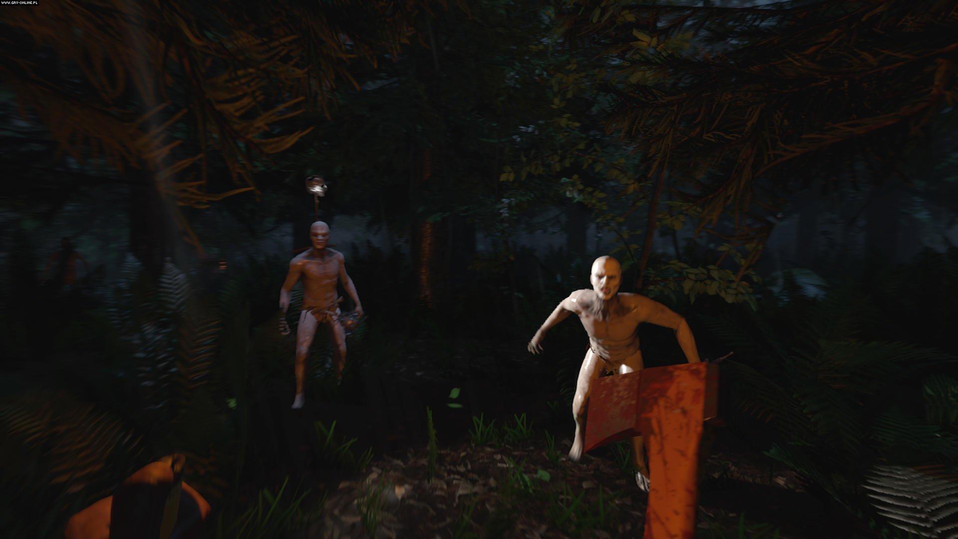 Znalezione obrazy dla zapytania the forest