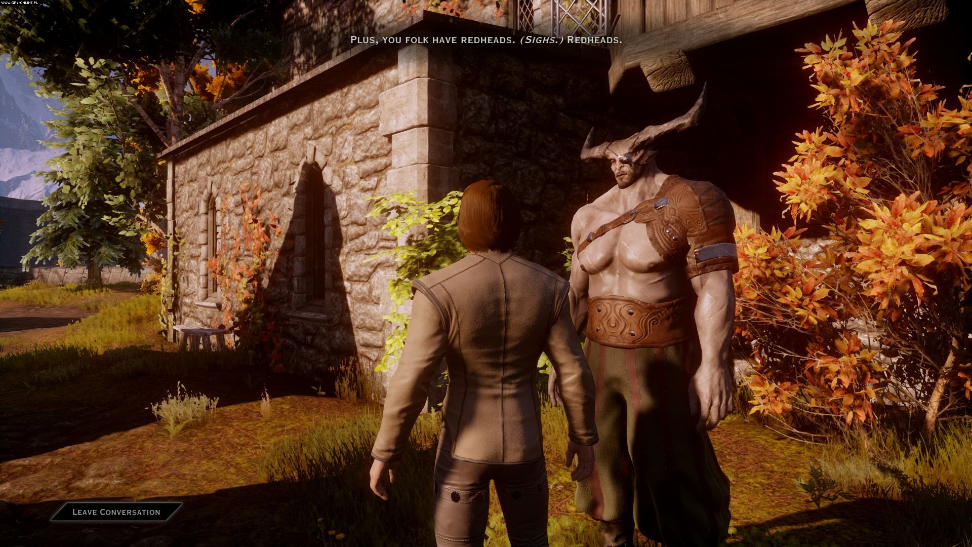 Dragon Age: Inquisition PC, X360, PS3 Games Image 7/225, BioWare Corporation, Electronic Arts Inc.