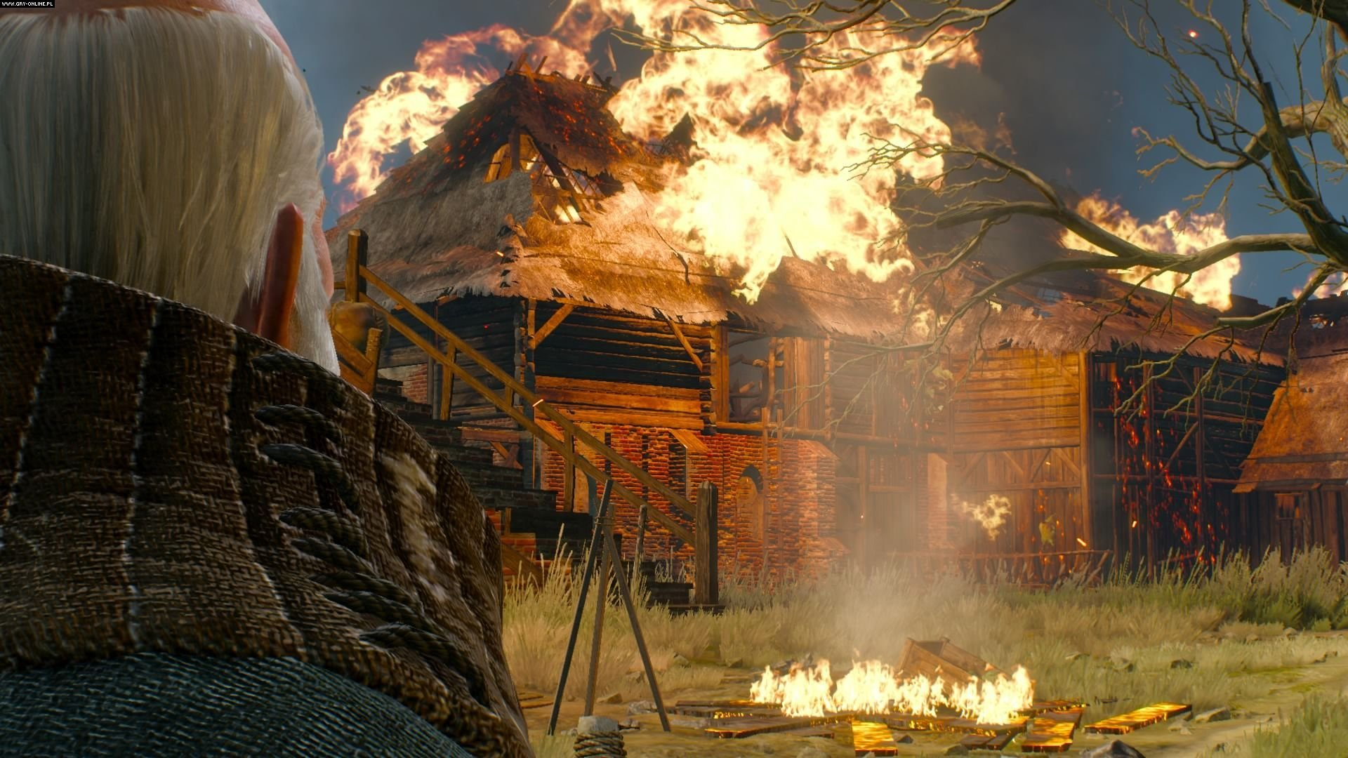 The Witcher 3: Wild Hunt PS4 Games Image 29/209, CD Projekt RED