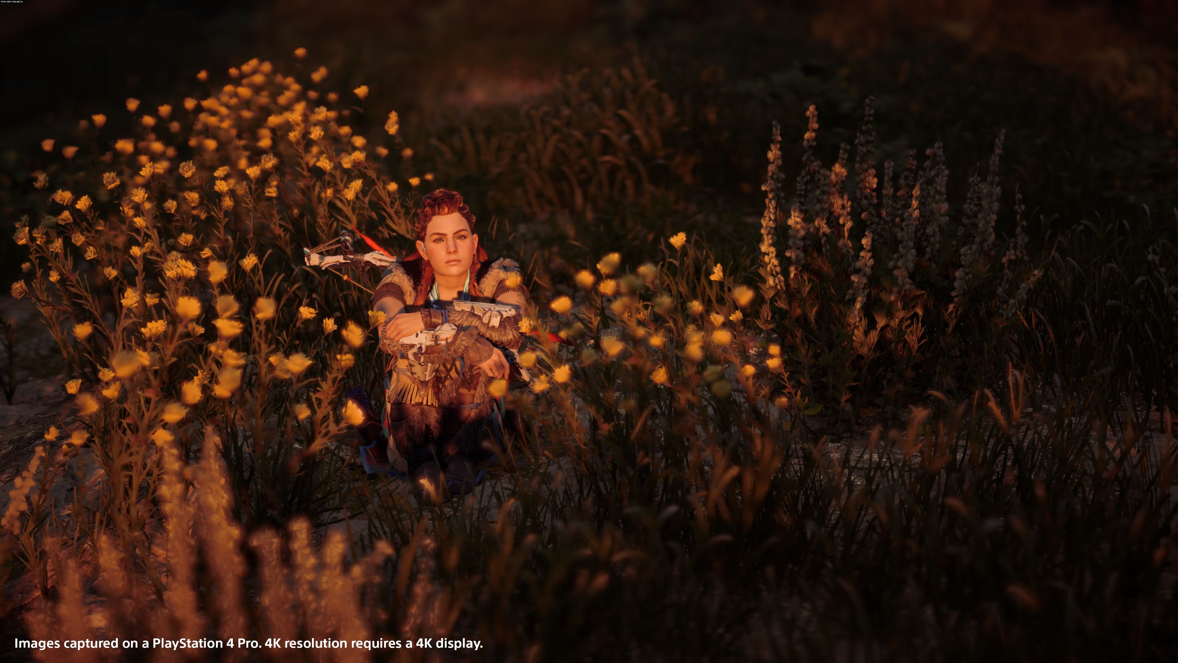 Horizon Zero Dawn PS4 Games Image 2/57, Guerrilla Games, Sony Interactive Entertainment