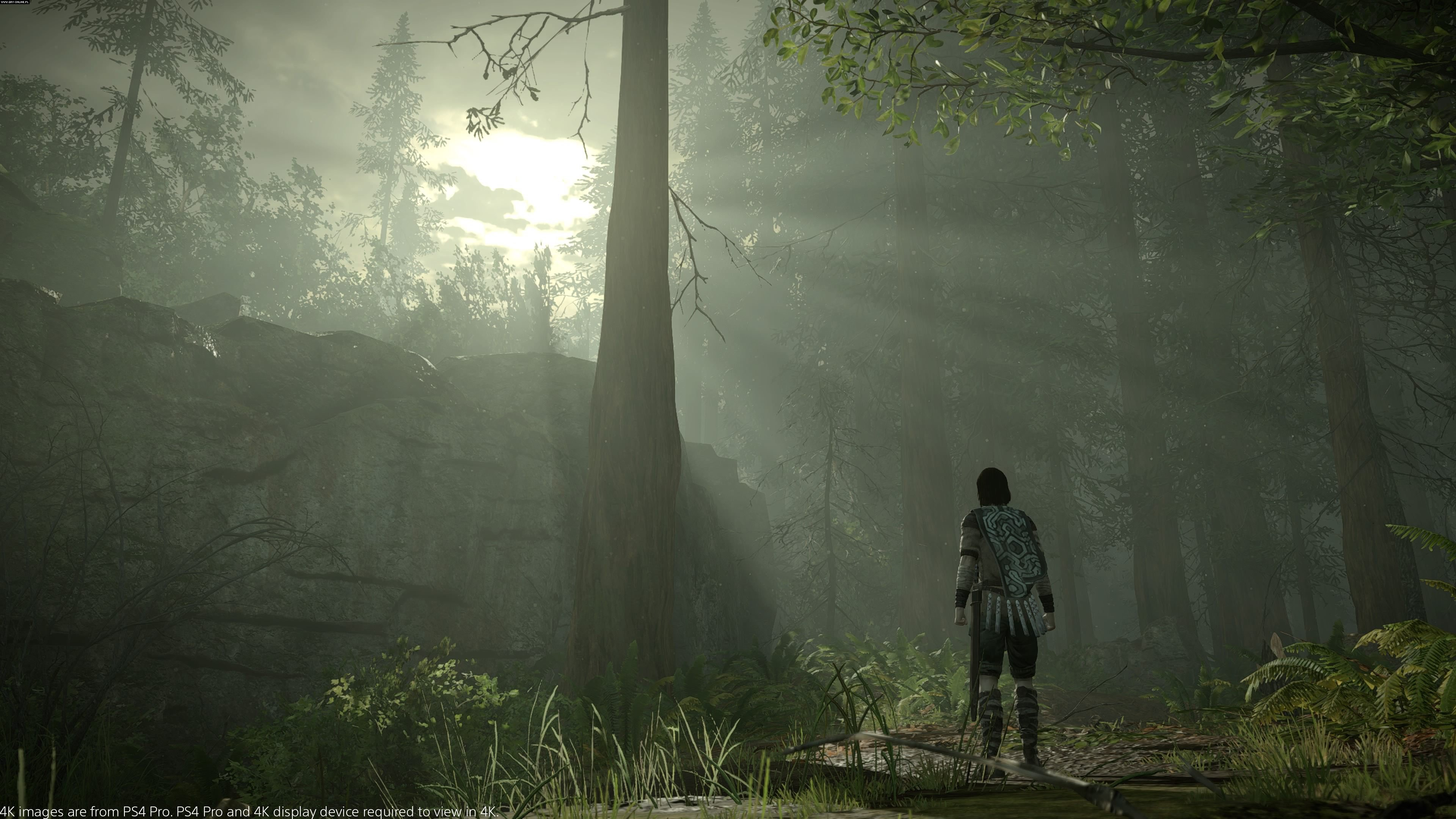 Shadow of the Colossus PS4 Gry Screen 5/32, Bluepoint Games, Sony Interactive Entertainment