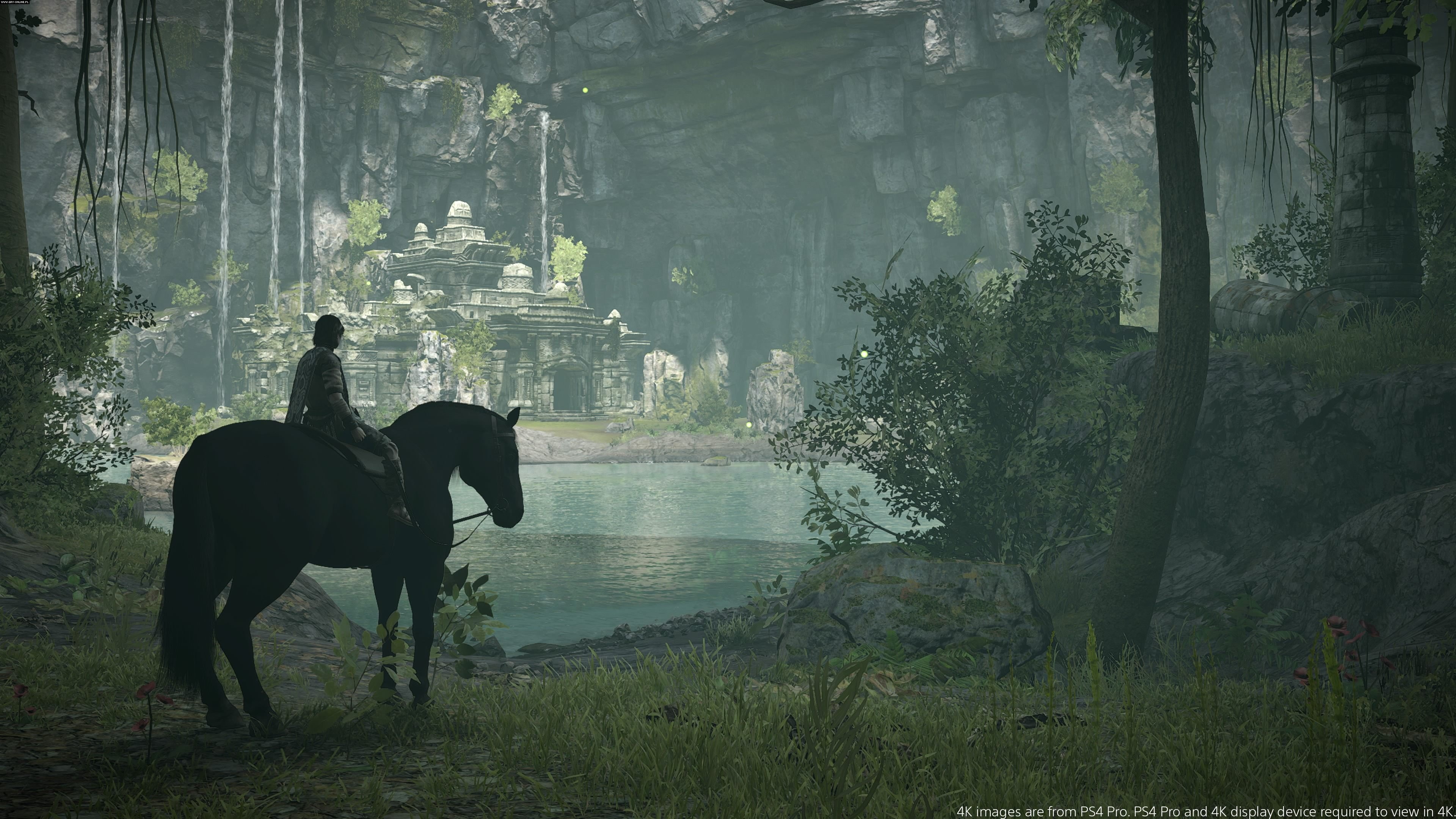 Shadow of the Colossus PS4 Gry Screen 1/32, Bluepoint Games, Sony Interactive Entertainment