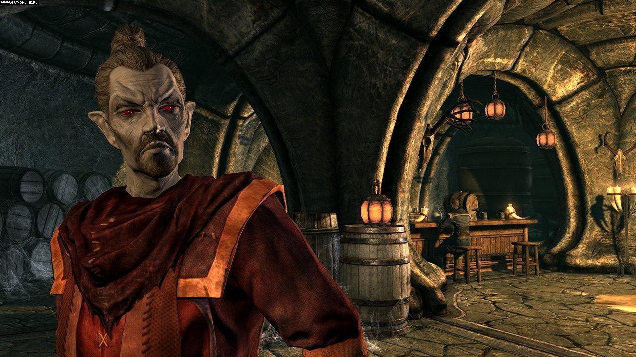 Najciekawsze materiały do The Elder Scrolls V: Skyrim - Dragonborn