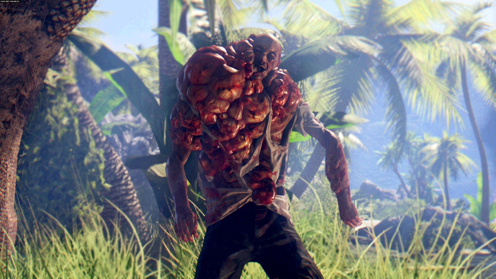 Dead Island: Definitive Collection PC, PS4, XONE Games Image 16/16, Techland, Deep Silver / Koch Media