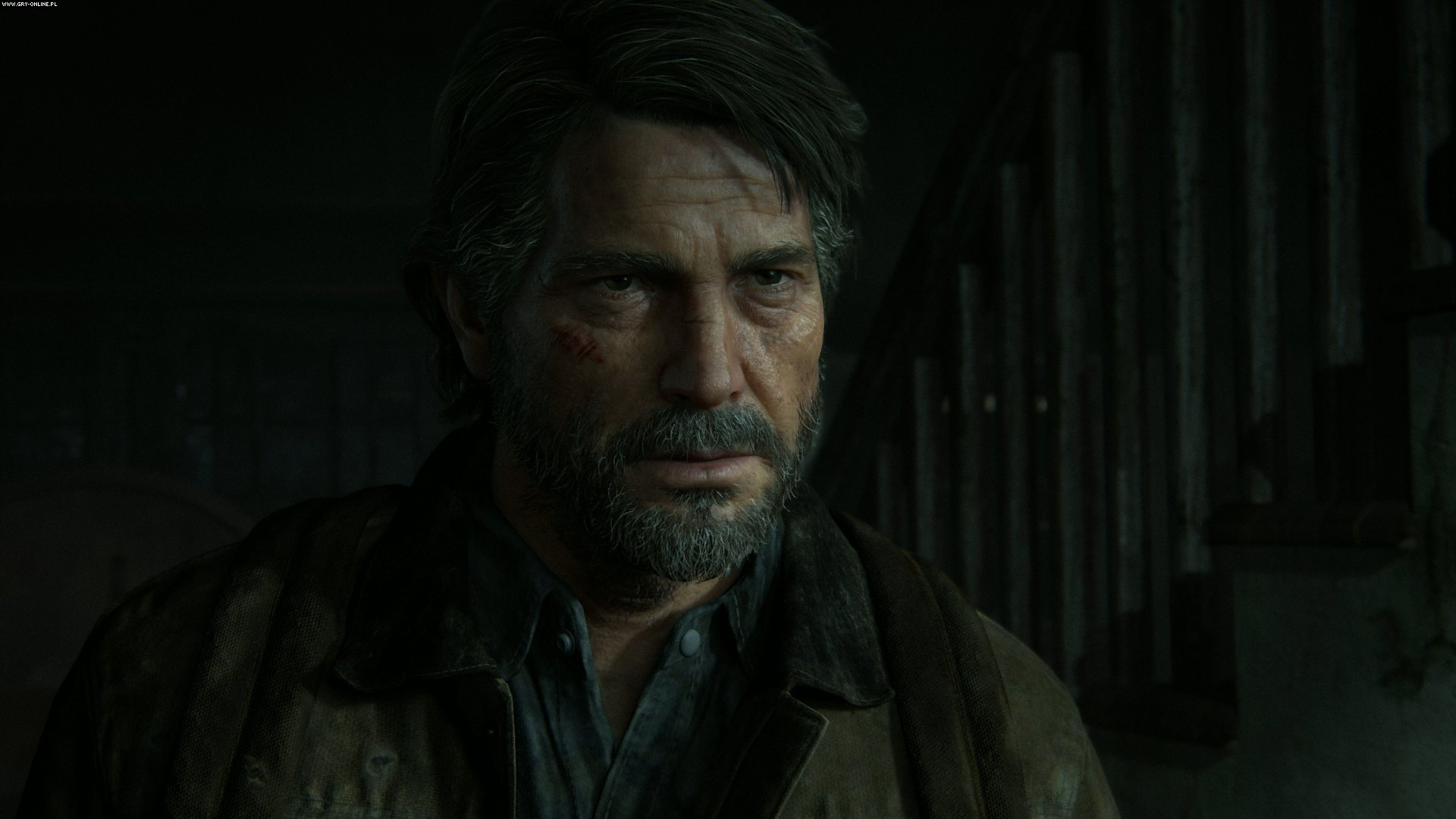 The Last of Us: Part II PS4 Games Image 2/38, Naughty Dog, Sony Interactive Entertainment