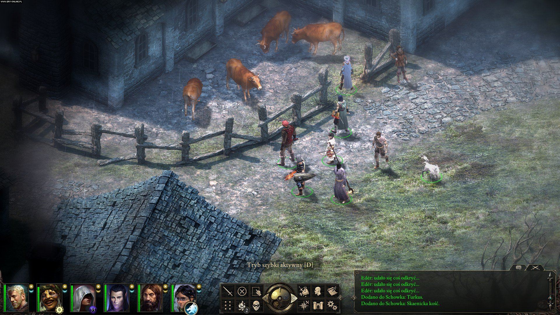 Pillars of Eternity PC Gry Screen 9/93, Obsidian Entertainment, Paradox Interactive