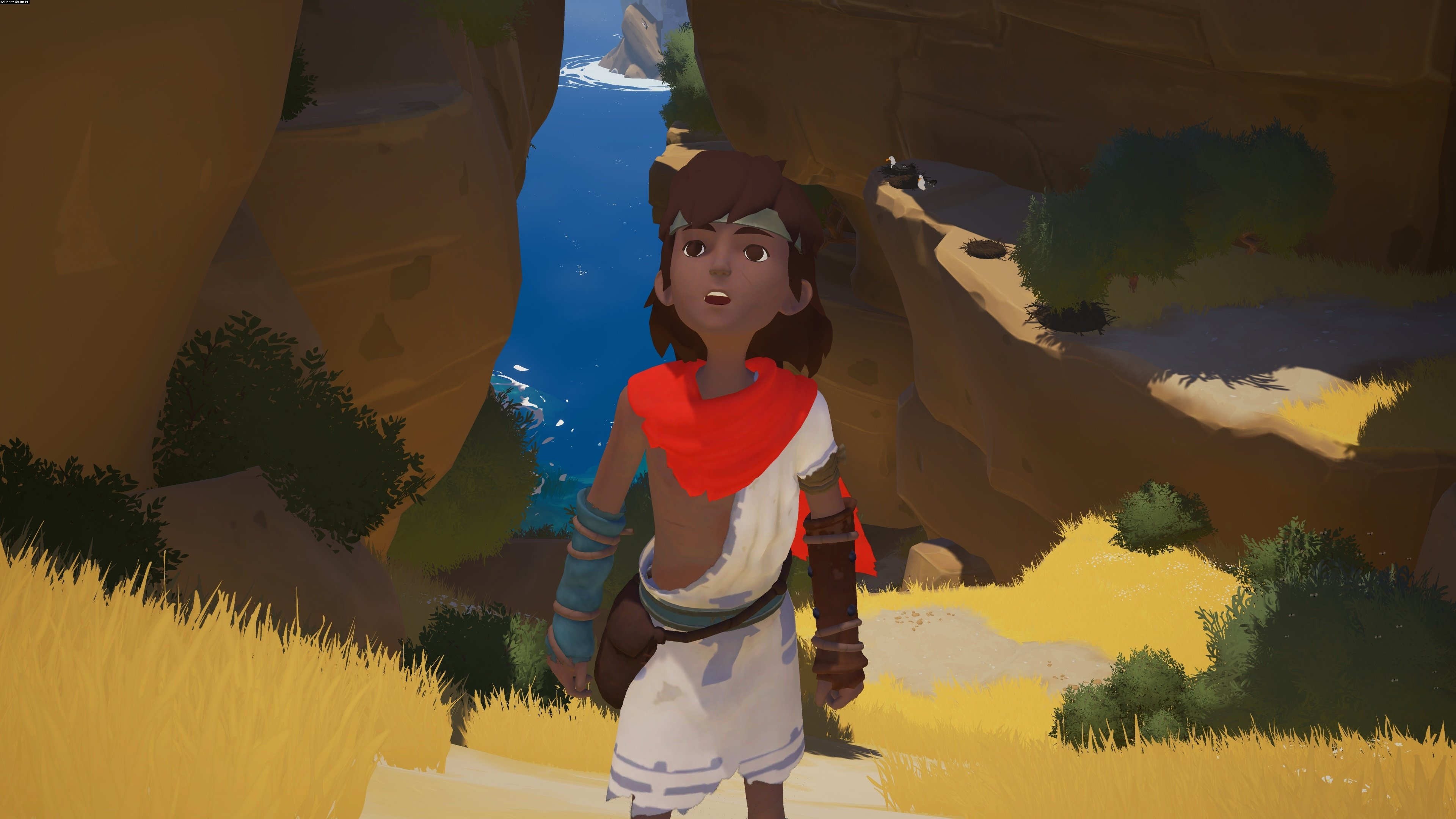 Rime PC, PS4 Gry Screen 79/121, Tequila Works, Grey Box